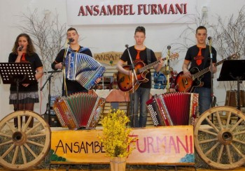 festival_harmonike_8